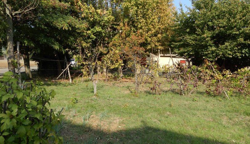 Terreno edificabile/Giardino