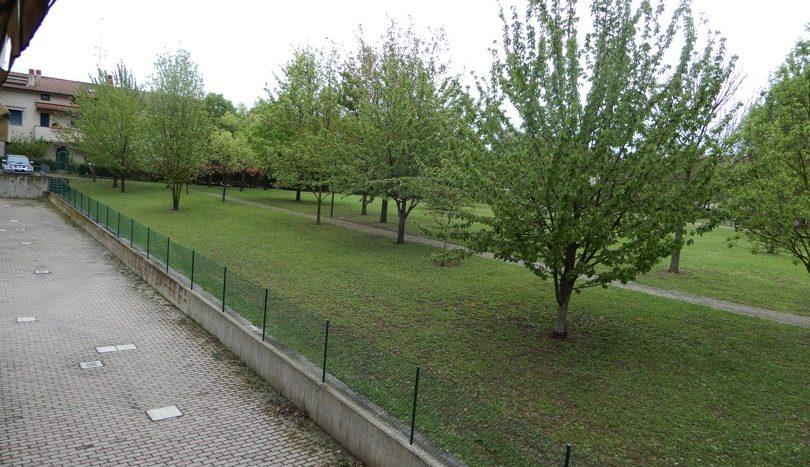 Parco retro